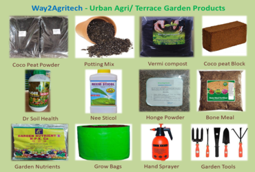 Seeds and planting material